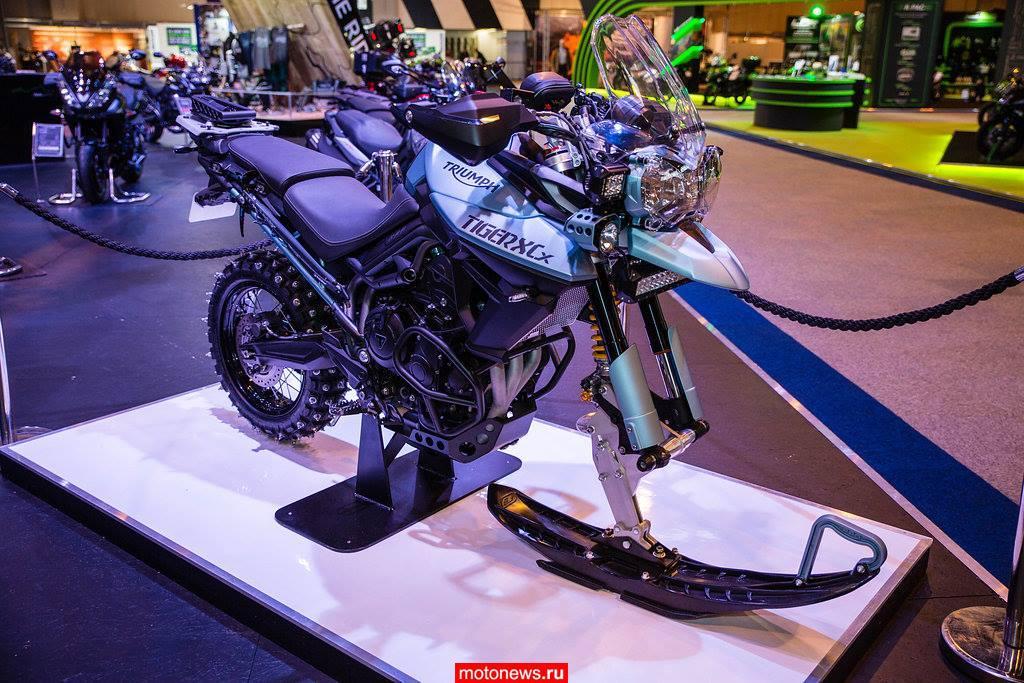 Мотоцикл для зимы от Triumph