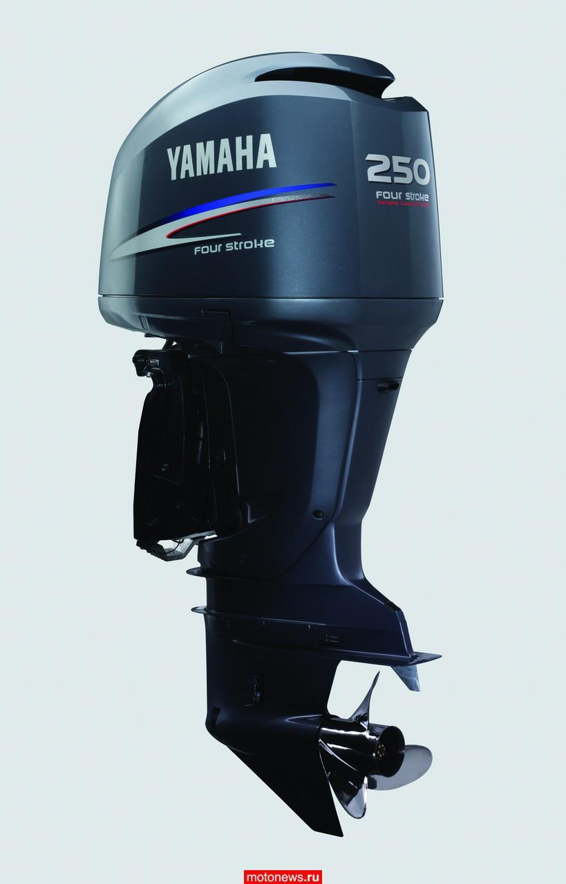 Yamaha 250 двигатель 2